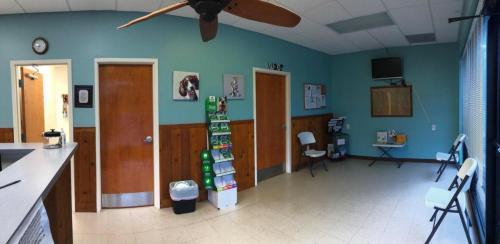 Dog Entrance Waiting Area