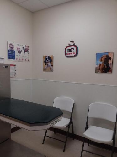 Large Dog Room