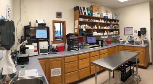 Treatment, Lab & Pharmacy